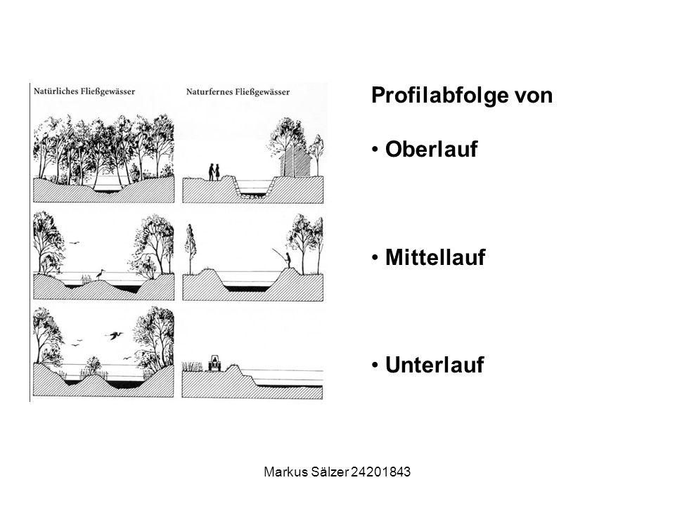 Markus Sälzer 24201843 Profilabfolge von Oberlauf Mittellauf Unterlauf