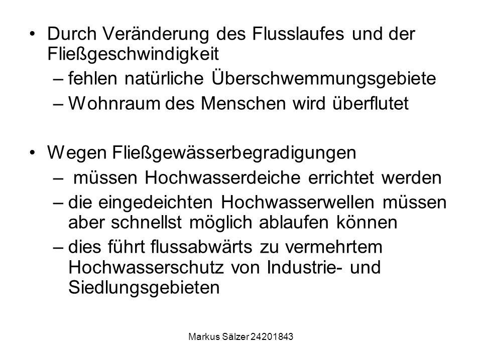 Markus Sälzer 24201843 Durch Veränderung des Flusslaufes und der Fließgeschwindigkeit –fehlen natürliche Überschwemmungsgebiete –Wohnraum des Menschen