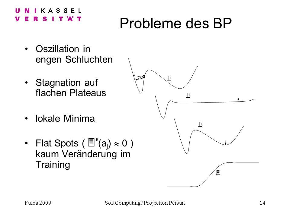 Fulda 2009SoftComputing / Projection Persuit14 Probleme des BP Oszillation in engen Schluchten Stagnation auf flachen Plateaus lokale Minima Flat Spot