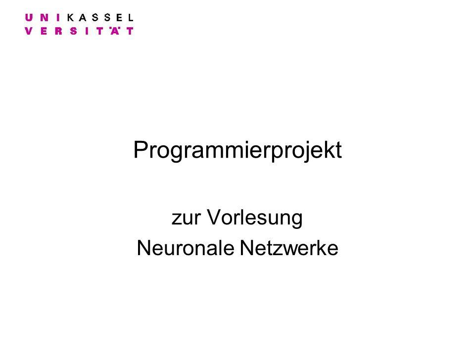 Programmierprojekt zur Vorlesung Neuronale Netzwerke