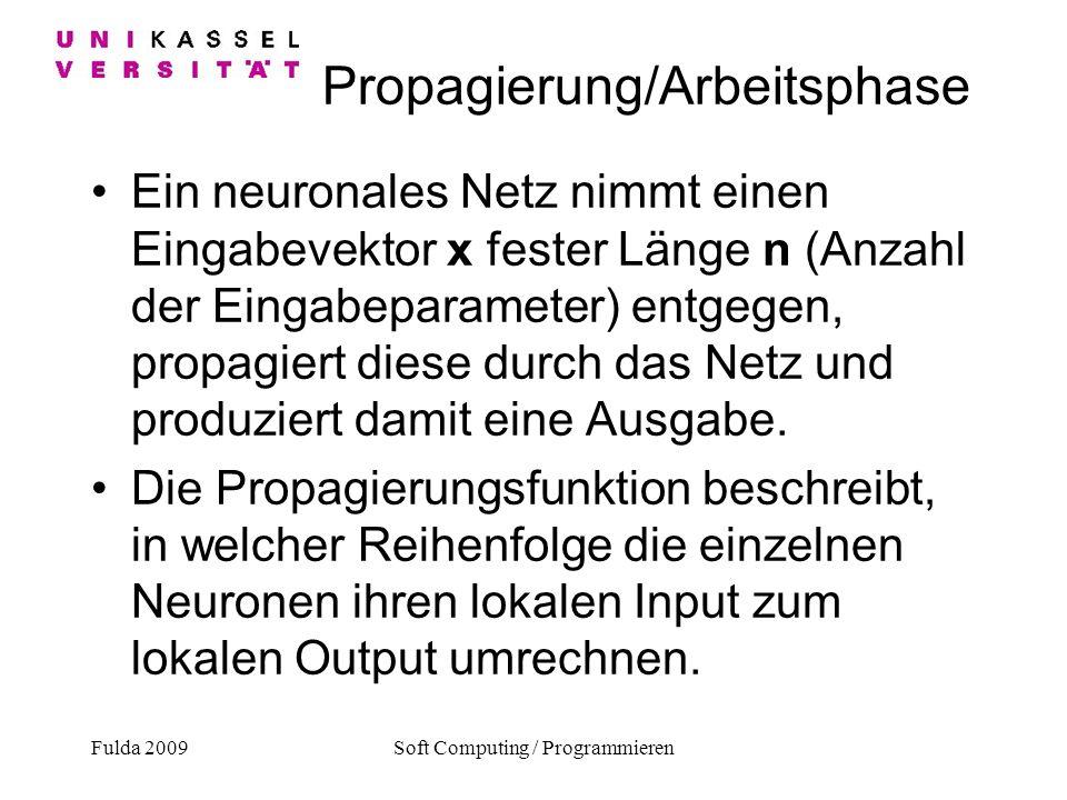 Fulda 2009Soft Computing / Programmieren Propagierung/Arbeitsphase Ein neuronales Netz nimmt einen Eingabevektor x fester Länge n (Anzahl der Eingabep