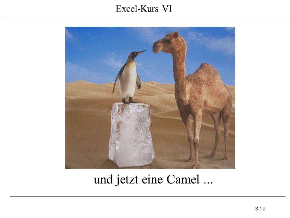Excel-Kurs VI 8 / 8 und jetzt eine Camel...