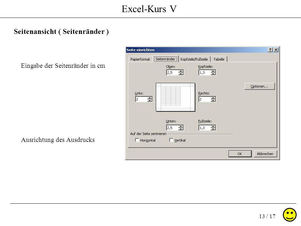 Excel-Kurs V 13 / 17 Seitenansicht ( Seitenränder ) Eingabe der Seitenränder in cm Ausrichtung des Ausdrucks