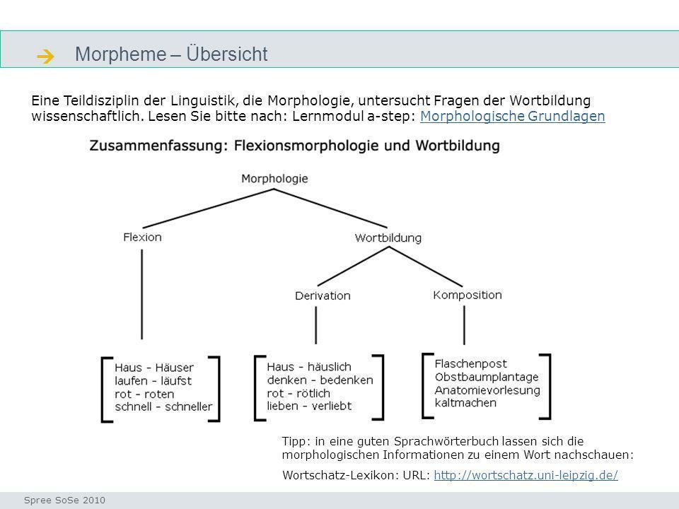 Morpheme – Übersicht Seminar I-Prax: Inhaltserschließung visueller Medien, 5.10.2004 Spree SoSe 2010 Tipp: in eine guten Sprachwörterbuch lassen sich