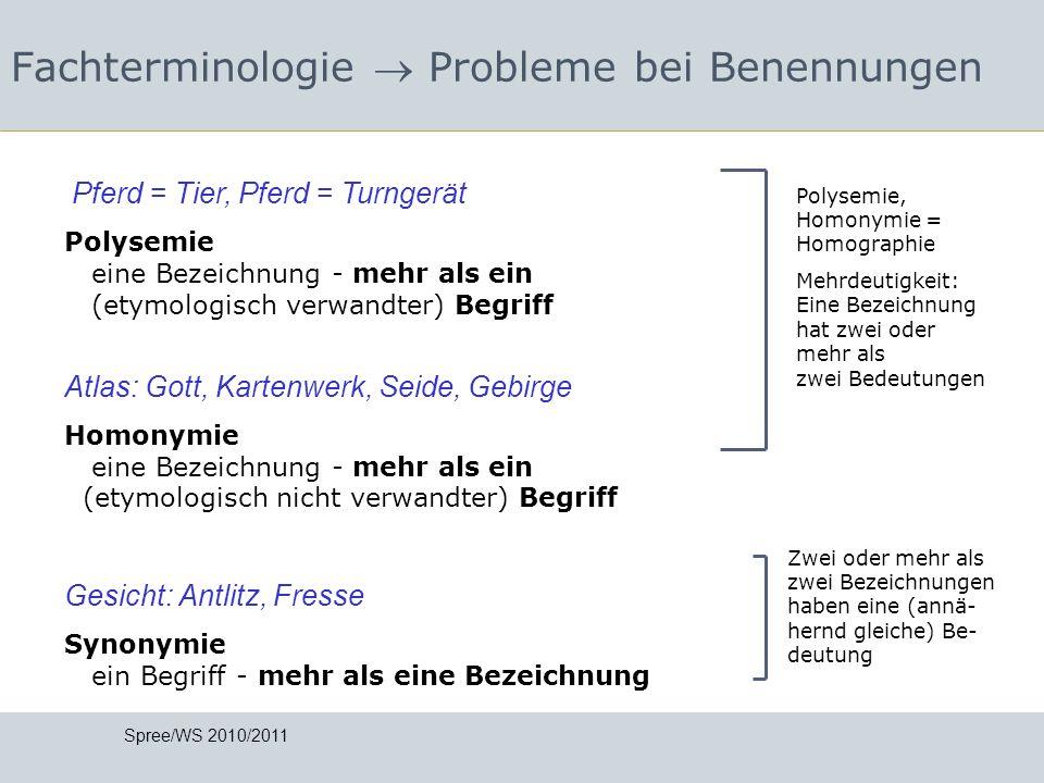 Fachterminologie Probleme bei Benennungen Polysemie, Homonymie = Homographie Mehrdeutigkeit: Eine Bezeichnung hat zwei oder mehr als zwei Bedeutungen