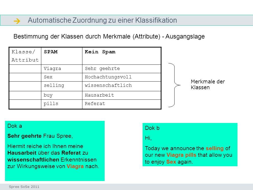 Automatische Zuordnung zu einer Klassifikation ausgangssituation Seminar I-Prax: Inhaltserschließung visueller Medien, 5.10.2004 Spree SoSe 2011 23.01