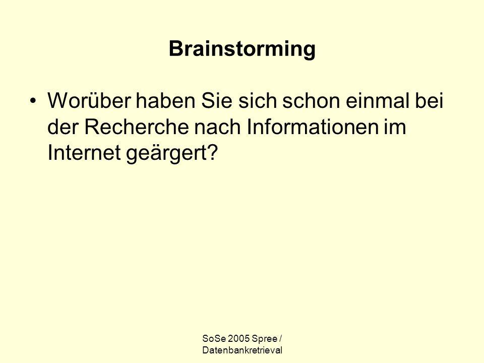 SoSe 2005 Spree / Datenbankretrieval Brainstorming Worüber haben Sie sich schon einmal bei der Recherche nach Informationen im Internet geärgert?