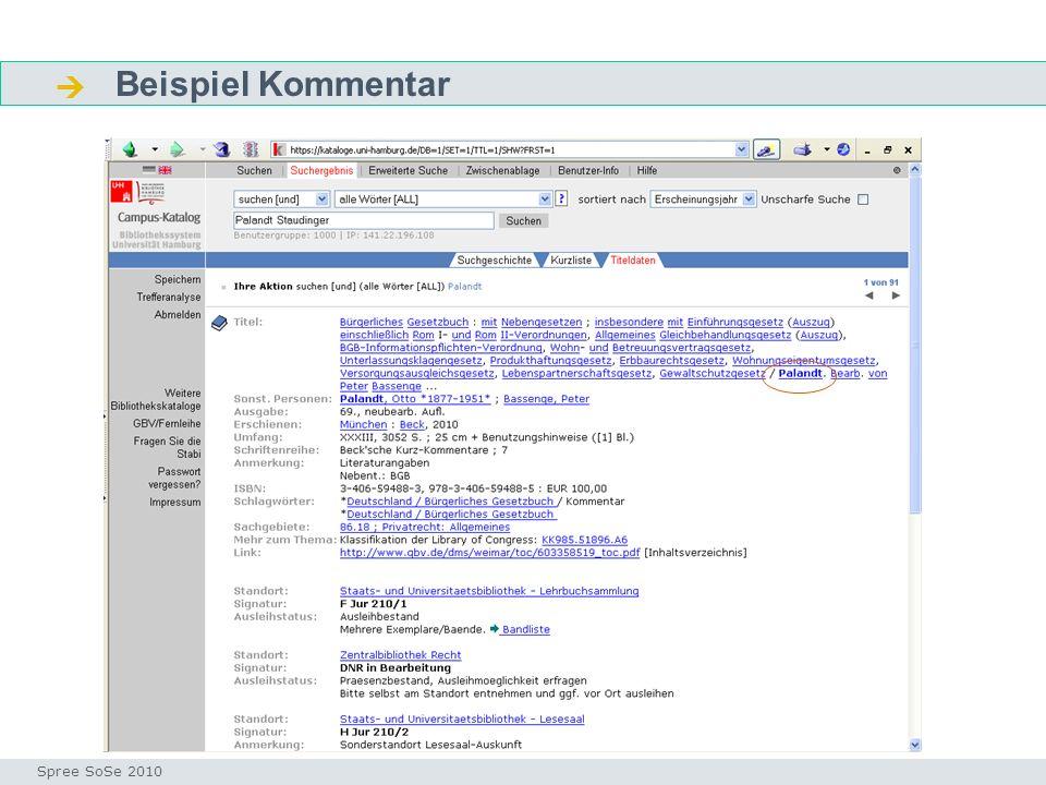 Beispiel Kommentar Fragen Seminar I-Prax: Inhaltserschließung visueller Medien, 5.10.2004 Spree SoSe 2010