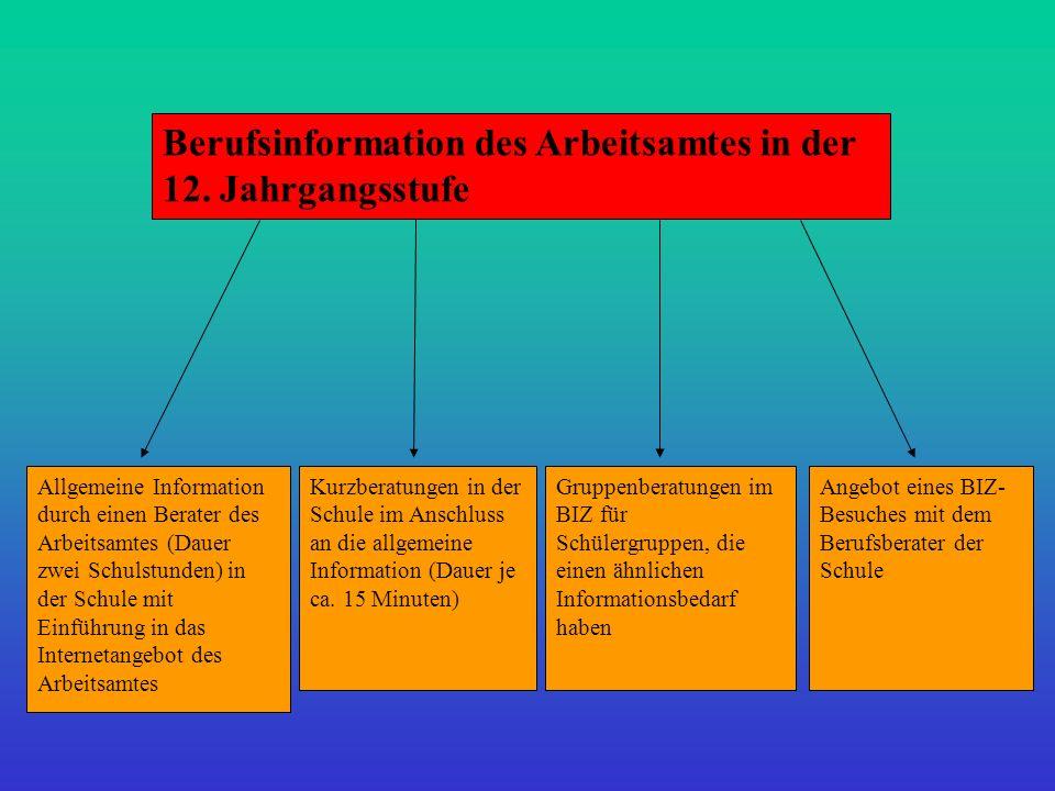 Allgemeine Information durch einen Berater des Arbeitsamtes (Dauer zwei Schulstunden) in der Schule mit Einführung in das Internetangebot des Arbeitsa