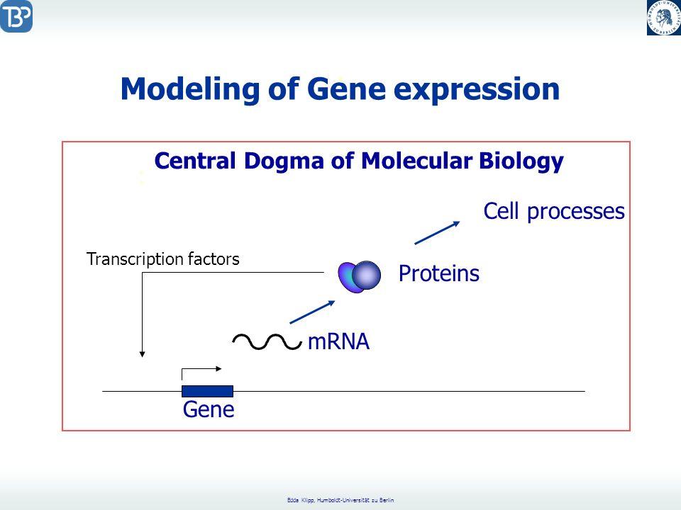 Edda Klipp, Humboldt-Universität zu Berlin Modeling of Gene expression.