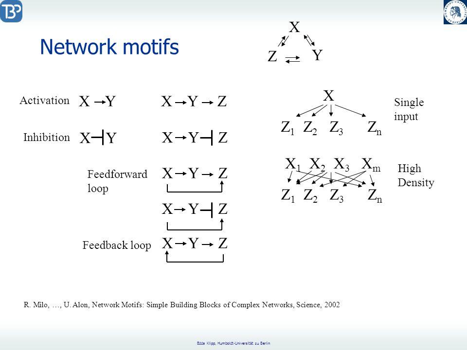Edda Klipp, Humboldt-Universität zu Berlin Network motifs X Y X Y Z X Z 1 Z 2 Z 3 Z n X 1 X 2 X 3 X m Z 1 Z 2 Z 3 Z n Single input High Density Feedforward loop Feedback loop Activation Inhibition R.