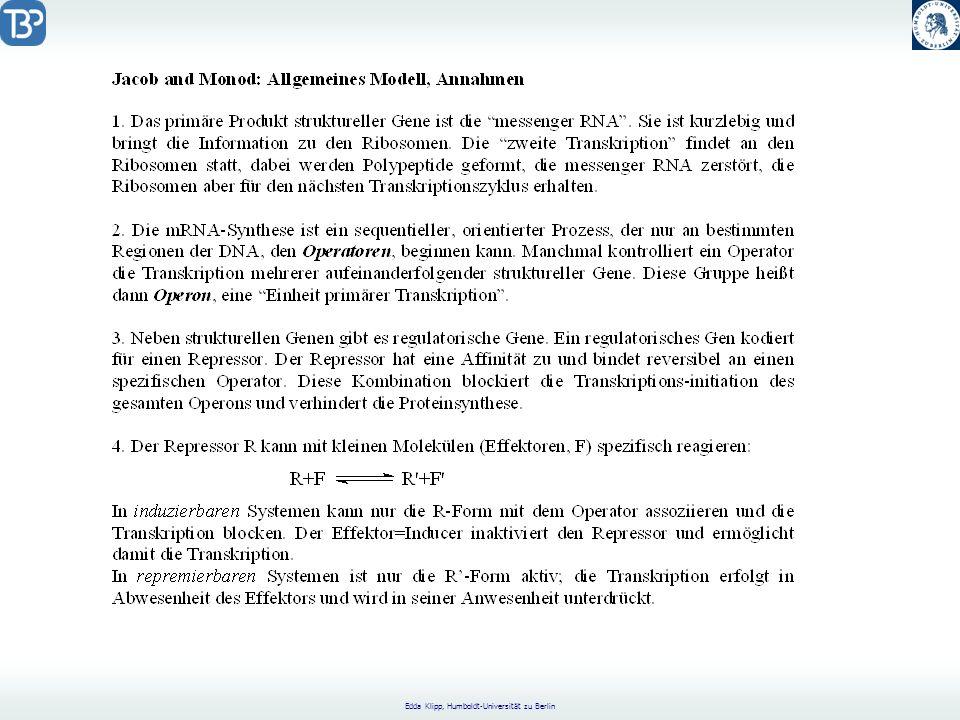 Edda Klipp, Humboldt-Universität zu Berlin