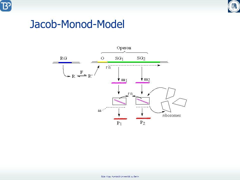 Jacob-Monod-Model