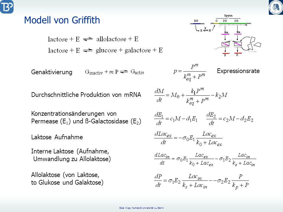 Edda Klipp, Humboldt-Universität zu Berlin Genaktivierung Durchschnittliche Produktion von mRNA Konzentrationsänderungen von Permease (E 1 ) und ß-Galactosidase (E 2 ) Laktose Aufnahme Interne Laktose (Aufnahme, Umwandlung zu Allolaktose) Allolaktose (von Laktose, to Glukose und Galaktose) Modell von Griffith Expressionsrate