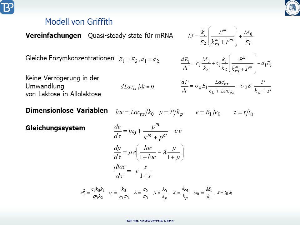 Edda Klipp, Humboldt-Universität zu Berlin VereinfachungenQuasi-steady state für mRNA Gleiche Enzymkonzentrationen Keine Verzögerung in der Umwandlung von Laktose in Allolaktose Dimensionlose Variablen Gleichungssystem Modell von Griffith