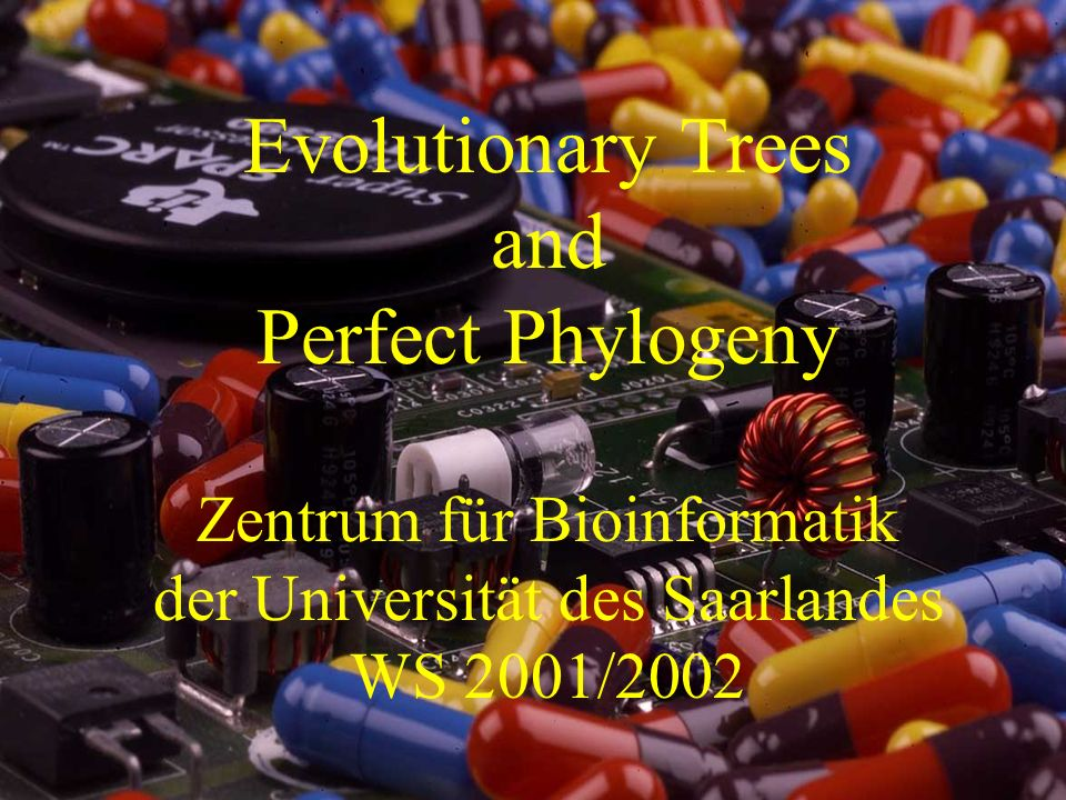 Evolutionary Trees and Perfect Phylogeny Zentrum für Bioinformatik der Universität des Saarlandes WS 2001/2002