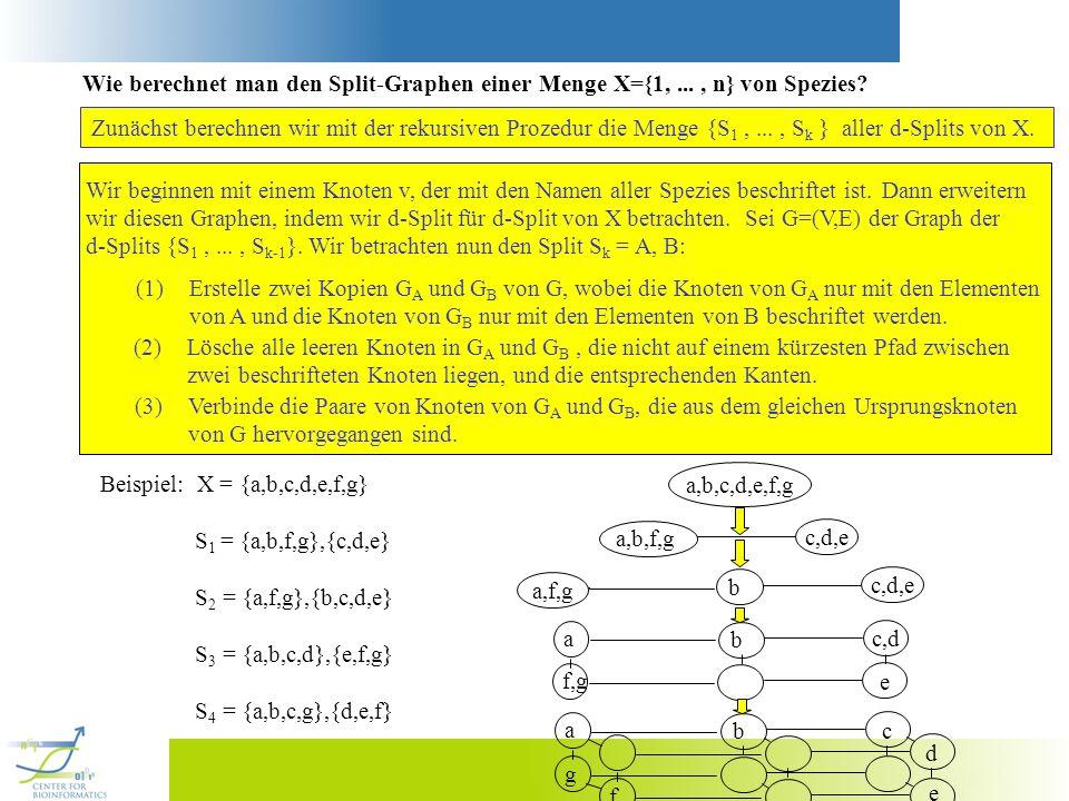 Wie berechnet man den Split-Graphen einer Menge X={1,..., n} von Spezies? Zunächst berechnen wir mit der rekursiven Prozedur die Menge {S 1,..., S k }