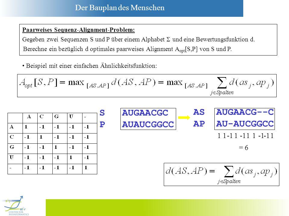Der Bauplan des Menschen S AUGAACGC P AUAUCGGCC AS AUGAACG--C AP AU-AUCGGCC 111 11 1 = 6 Gegeben zwei Sequenzen S und P über einem Alphabet und eine B