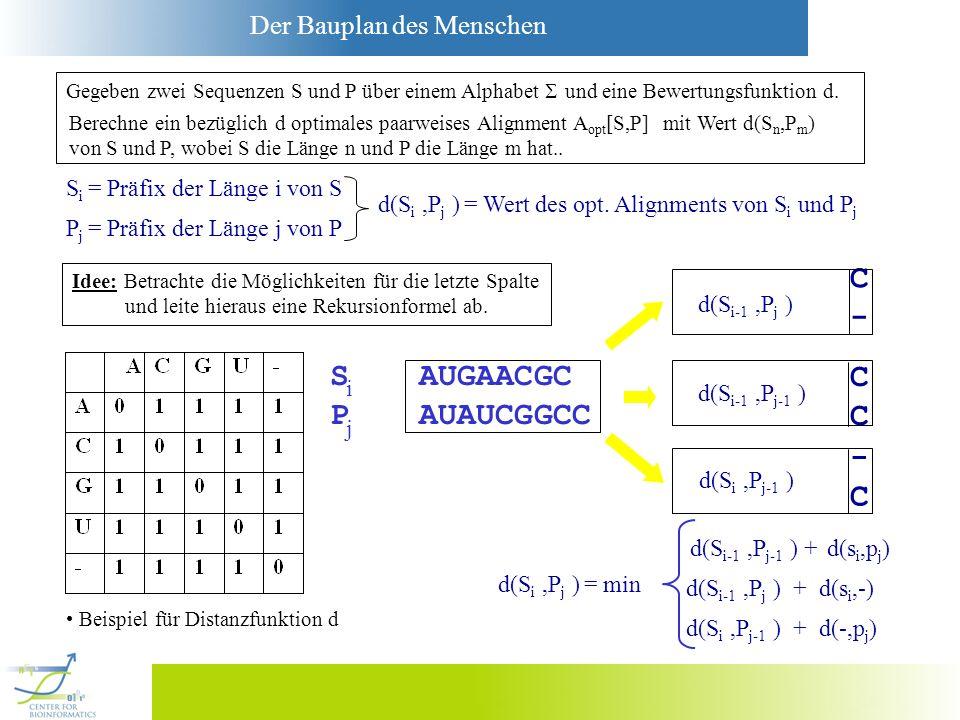 Der Bauplan des Menschen S AUGAACGC P AUAUCGGCC Gegeben zwei Sequenzen S und P über einem Alphabet und eine Bewertungsfunktion d. Berechne ein bezügli