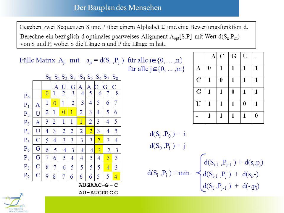 Der Bauplan des Menschen 0 Gegeben zwei Sequenzen S und P über einem Alphabet und eine Bewertungsfunktion d. Berechne ein bezüglich d optimales paarwe