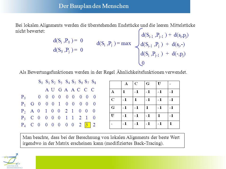 Der Bauplan des Menschen Bei lokalen Alignments werden die überstehenden Endstücke und die leeren Mittelstücke nicht bewertet: d(S i,P 0 ) = 0 d(S 0,P