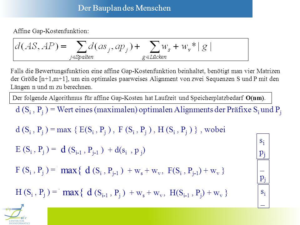 Der Bauplan des Menschen Falls die Bewertungsfunktion eine affine Gap-Kostenfunktion beinhaltet, benötigt man vier Matrizen der Größe [n+1,m+1], um ei