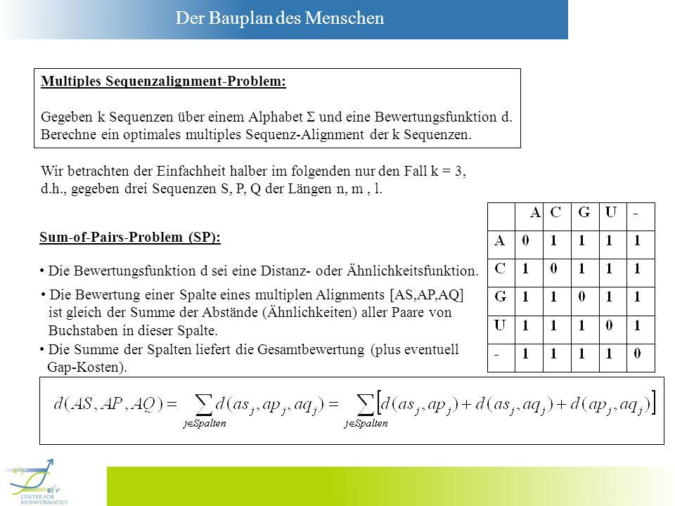 Der Bauplan des Menschen Wir betrachten der Einfachheit halber im folgenden nur den Fall k = 3, d.h., gegeben drei Sequenzen S, P, Q der Längen n, m,