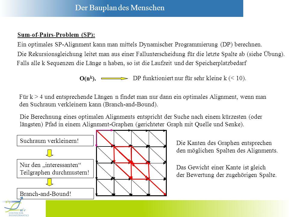 Der Bauplan des Menschen Sum-of-Pairs-Problem (SP): Ein optimales SP-Alignment kann man mittels Dynamischer Programmierung (DP) berechnen. Die Rekursi