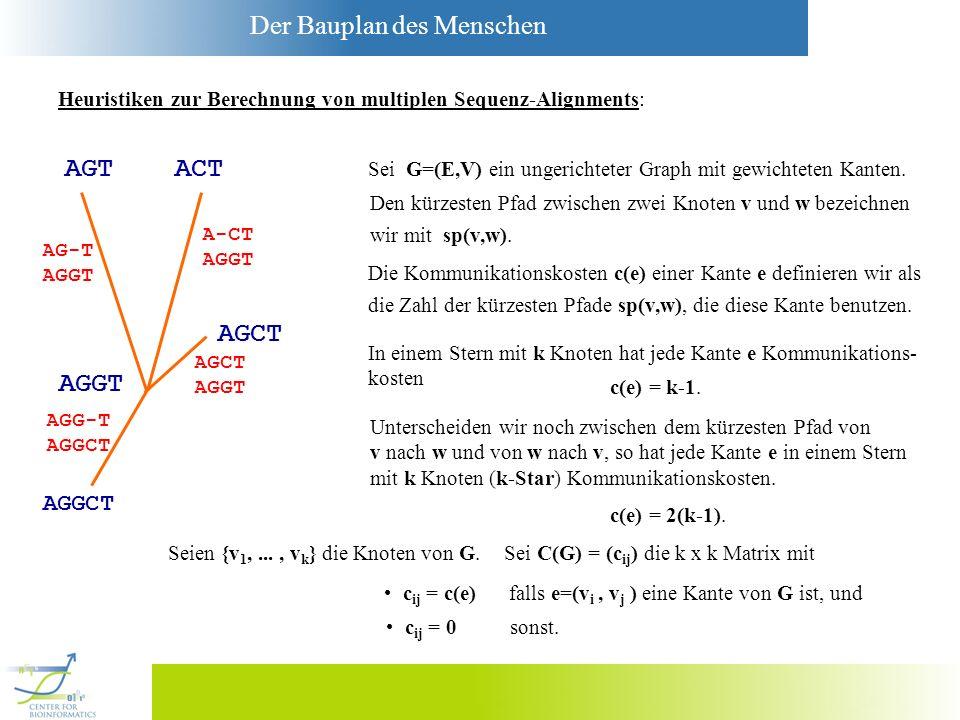 Der Bauplan des Menschen Heuristiken zur Berechnung von multiplen Sequenz-Alignments: AGCT AGT ACT AGGT AGGCT AG-T AGGT A-CT AGGT AGCT AGGT AGG-T AGGC