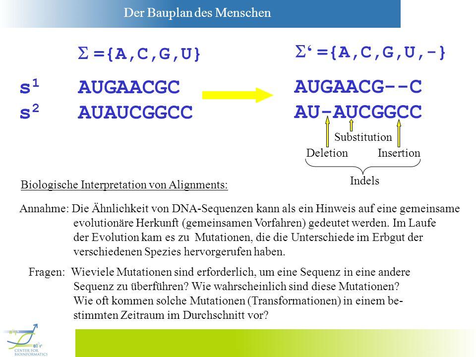 Der Bauplan des Menschen ={A,C,G,U,-} AUGAACG--C AU-AUCGGCC ={A,C,G,U} s 1 AUGAACGC s 2 AUAUCGGCC Biologische Interpretation von Alignments: Annahme: