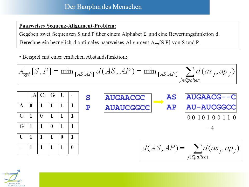 Der Bauplan des Menschen S AUGAACGC P AUAUCGGCC AS AUGAACG--C AP AU-AUCGGCC 0010100110 = 4 Gegeben zwei Sequenzen S und P über einem Alphabet und eine