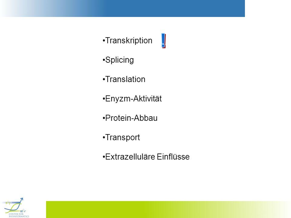Transkription Splicing Translation Enyzm-Aktivität Protein-Abbau Transport Extrazelluläre Einflüsse