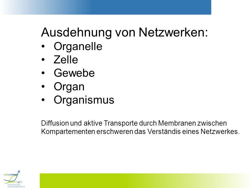 Ausdehnung von Netzwerken: Organelle Zelle Gewebe Organ Organismus Diffusion und aktive Transporte durch Membranen zwischen Kompartementen erschweren