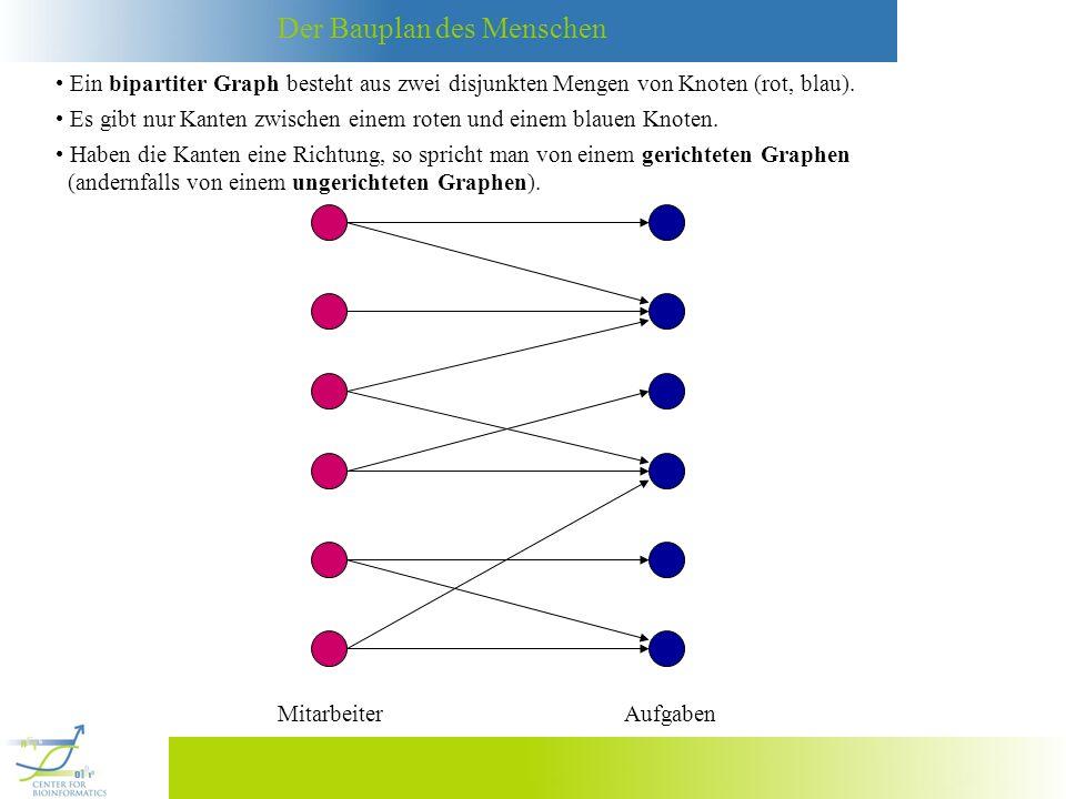 Der Bauplan des Menschen Ein bipartiter Graph besteht aus zwei disjunkten Mengen von Knoten (rot, blau). MitarbeiterAufgaben Es gibt nur Kanten zwisch