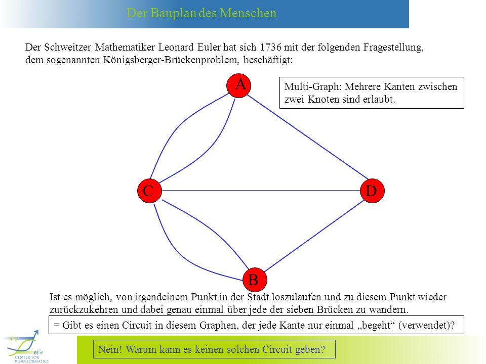 Der Bauplan des Menschen Der Schweitzer Mathematiker Leonard Euler hat sich 1736 mit der folgenden Fragestellung, dem sogenannten Königsberger-Brückenproblem, beschäftigt: A B CD Multi-Graph: Mehrere Kanten zwischen zwei Knoten sind erlaubt.