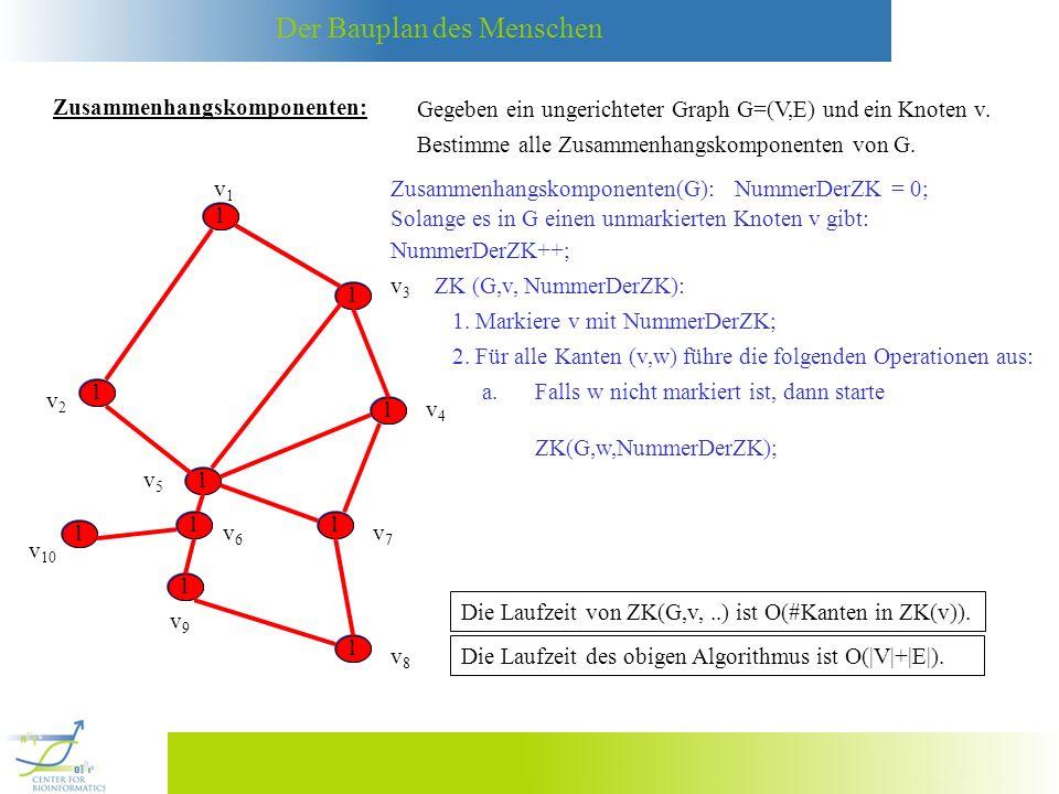 Der Bauplan des Menschen v4v4 v1v1 v3v3 v2v2 v5v5 v6v6 v7v7 v8v8 v9v9 v 10 Zusammenhangskomponenten: Gegeben ein ungerichteter Graph G=(V,E) und ein K