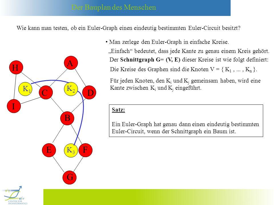 Der Bauplan des Menschen Wie kann man testen, ob ein Euler-Graph einen eindeutig bestimmten Euler-Circuit besitzt? Man zerlege den Euler-Graph in einf