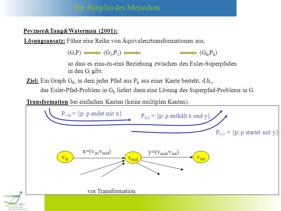 Der Bauplan des Menschen P y-> = {p| p startet mit y} P ->x = {p| p endet mit x} P x,y = {p| p enthält x und y} v in x=(v in,v mid ) v mid v out y=(v mid,v out ) vor Transformation v in v mid v out z nach Transformation 1.