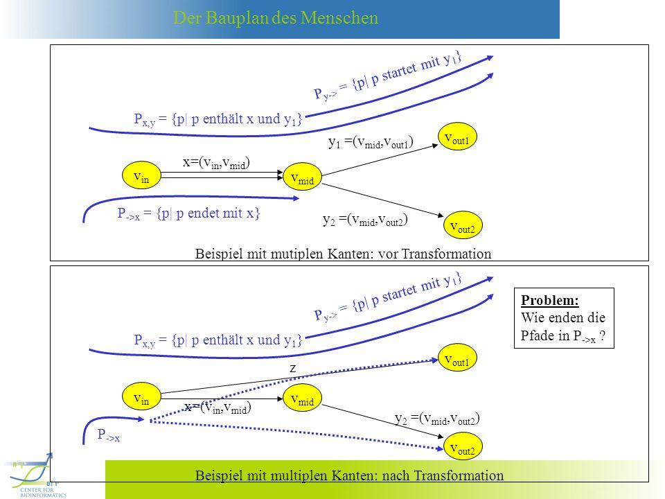 Der Bauplan des Menschen P ->x = {p| p endet mit x} Beispiel mit mutiplen Kanten: vor Transformation v in x=(v in,v mid ) v mid v out1 y 1 =(v mid,v o