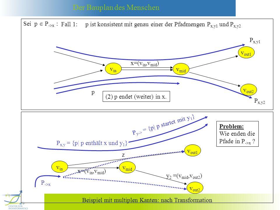 Der Bauplan des Menschen Beispiel mit multiplen Kanten: nach Transformation P ->x v in x=(v in,v mid ) v mid v out1 z v out2 y 2 =(v mid,v out2 ) P x,y = {p| p enthält x und y 1 } P y-> = {p| p startet mit y 1 } Problem: Wie enden die Pfade in P ->x .