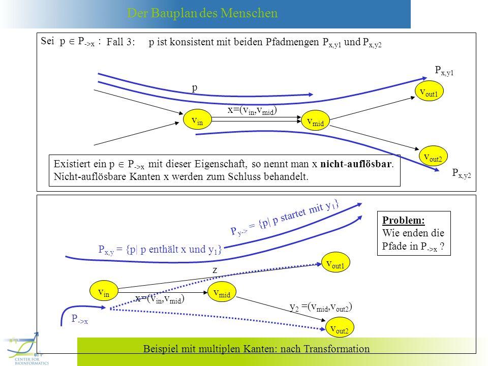 Der Bauplan des Menschen Sei x eine nicht-auflösbare Kante (siehe Beispiel unten).