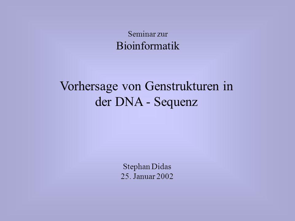 Vorhersage von Genstrukturen in der DNA - Sequenz Seminar zur Bioinformatik Stephan Didas 25.