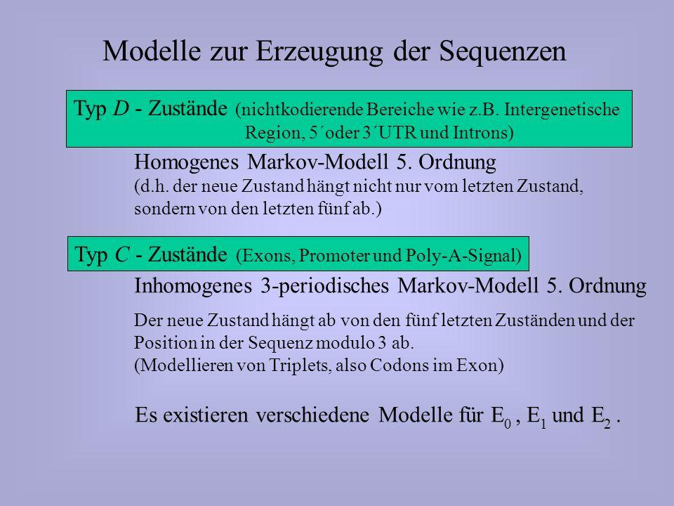 Typ D - Zustände (nichtkodierende Bereiche wie z.B.