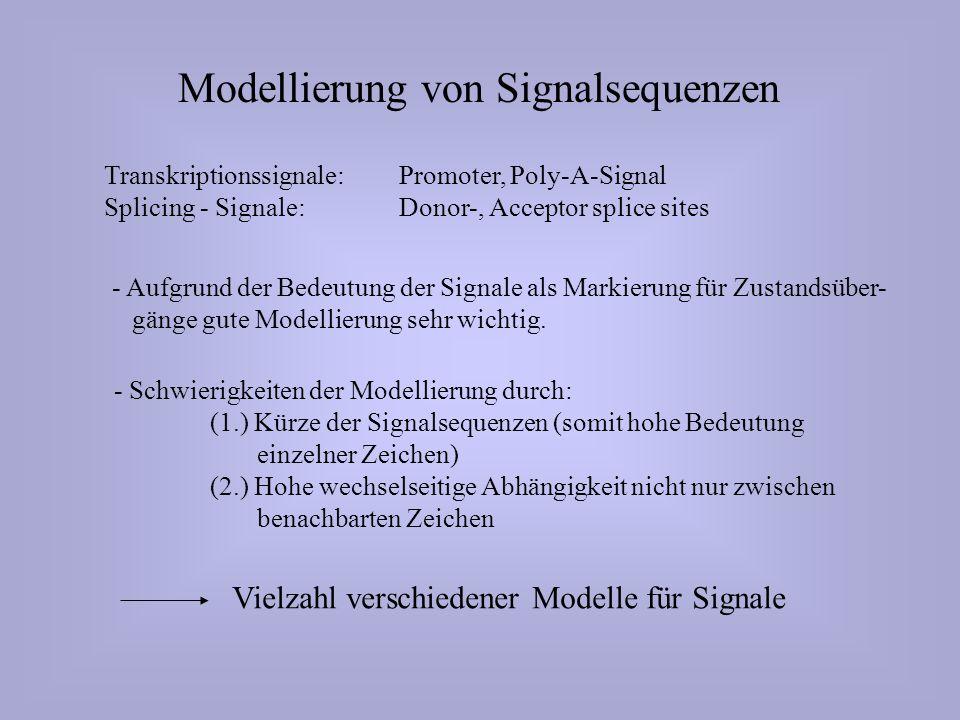Modellierung von Signalsequenzen Transkriptionssignale: Promoter, Poly-A-Signal Splicing - Signale: Donor-, Acceptor splice sites - Aufgrund der Bedeutung der Signale als Markierung für Zustandsüber- gänge gute Modellierung sehr wichtig.