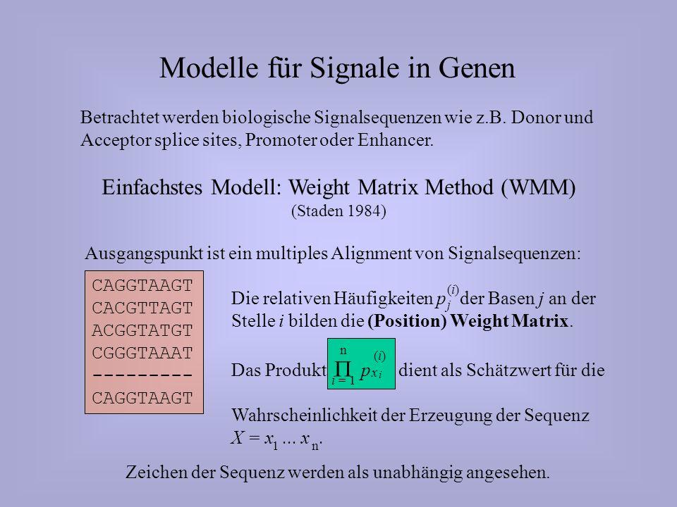 Modelle für Signale in Genen Betrachtet werden biologische Signalsequenzen wie z.B.