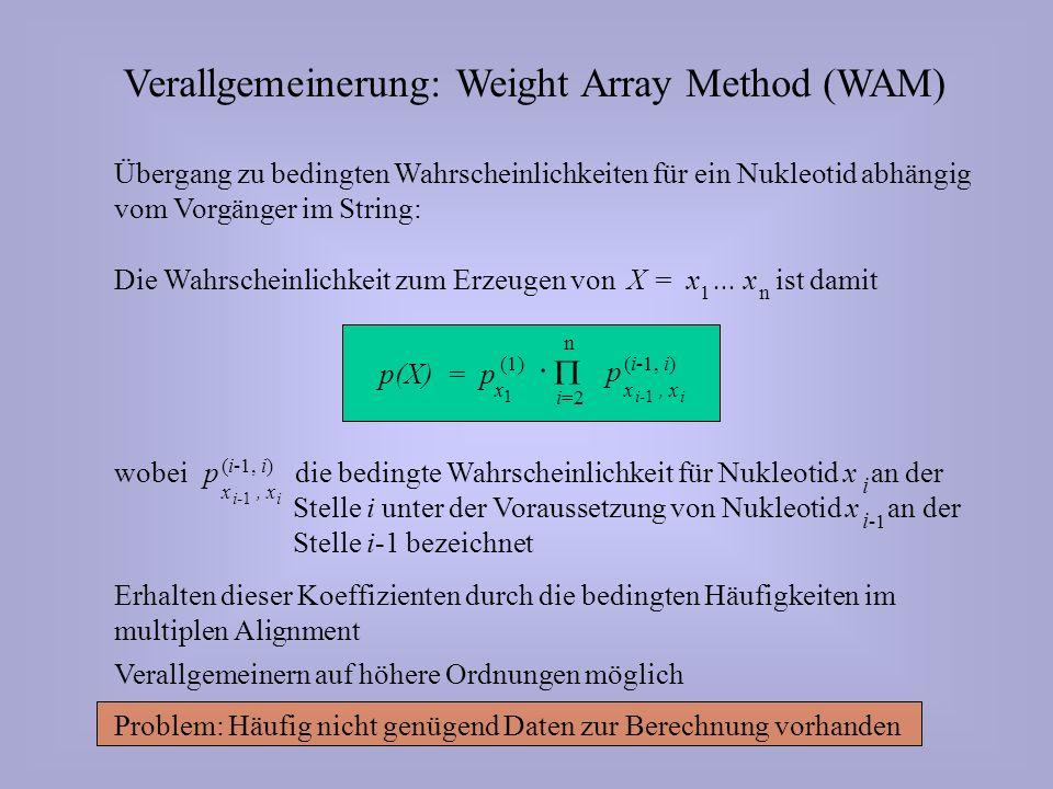 Verallgemeinerung: Weight Array Method (WAM) Übergang zu bedingten Wahrscheinlichkeiten für ein Nukleotid abhängig vom Vorgänger im String: Erhalten dieser Koeffizienten durch die bedingten Häufigkeiten im multiplen Alignment Verallgemeinern auf höhere Ordnungen möglich Problem: Häufig nicht genügend Daten zur Berechnung vorhanden Die Wahrscheinlichkeit zum Erzeugen von ist damit X = x...