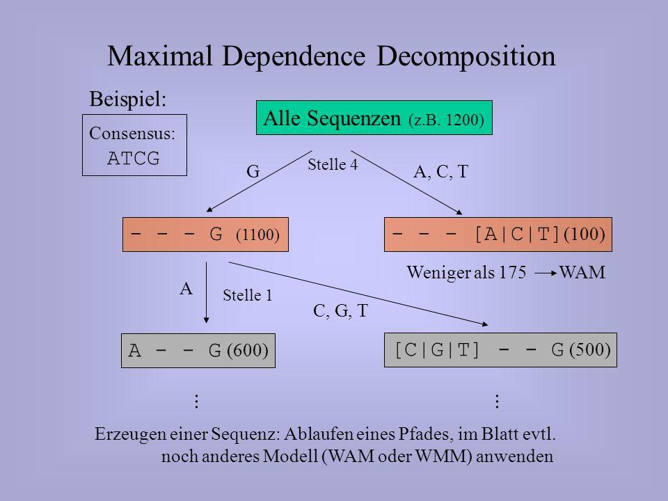 Beispiel: Alle Sequenzen (z.B.