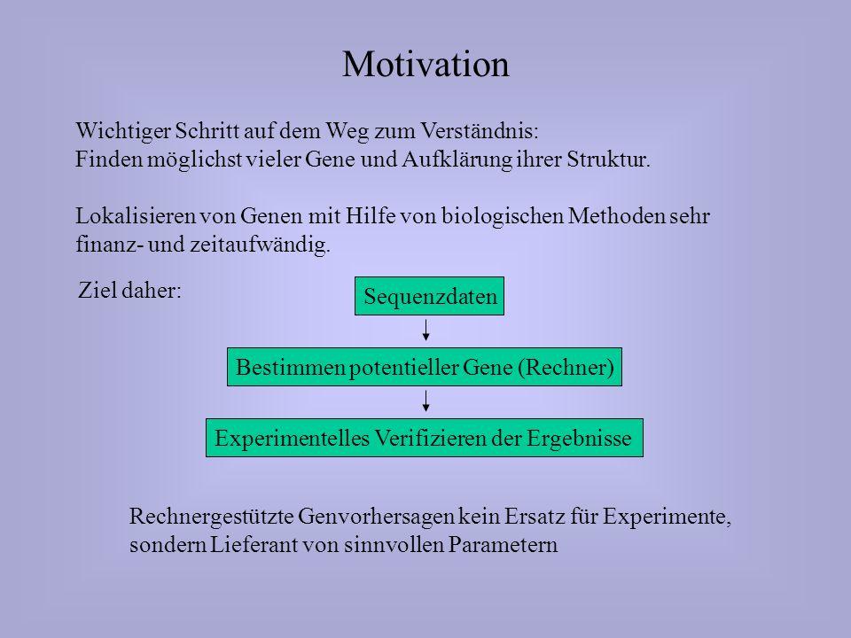 Motivation Wichtiger Schritt auf dem Weg zum Verständnis: Finden möglichst vieler Gene und Aufklärung ihrer Struktur.