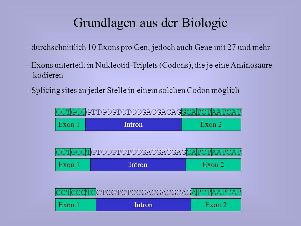 Vorgehensweisen zum Suchen neuer Gene (2.) Gezielte Suche eines Gens zu bekanntem Protein / RNA (3.) Durchsuchen neuer Sequenzdaten nach Genen Protein DNA-Sequenz mRNAkodierende DNAPotentiell kodierende Bereiche Vorhersage über Peptid-SequenzSuche des zugehörigen Proteins Technik: Spliced Alignment Technik: Statistische Methoden, Wahrscheinlichkeits- theoretische Modelle (1.) Ähnlichkeitssuche in der DNA mit der Sequenz schon bekannter Gene Auch mit Hilfe bekannter Sequenzen von anderen Organismen möglich