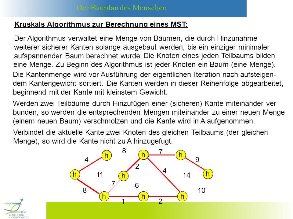 Der Bauplan des Menschen MST-KRUSKAL(G,w): (1) A = (2) Für jeden Knoten v V: (5) Falls Menge(u) Menge(v): (3) Sortiere alle Kanten von E in aufsteigender Reihenfolge bezüglich der Gewichte.